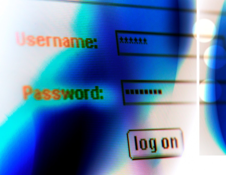 Análisis de Vulnerabilidades Online